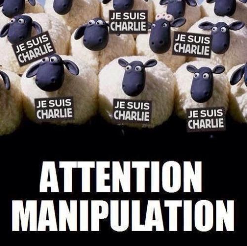 Charlie_6.jpg