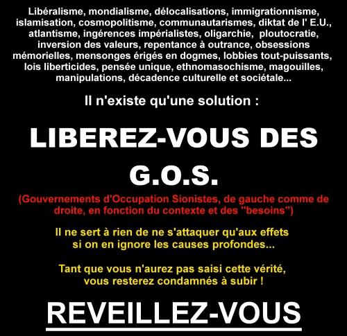 G.O.S._2.jpg