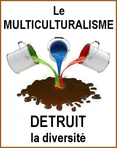 Multiculturalism_2_fr.jpg