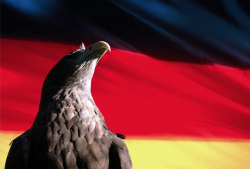 german_flag_by_rising_nature-d4v5zay-1024x691.jpg