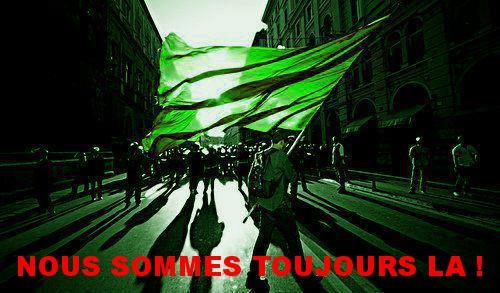 Drapeau_vert_TOUJOURS_LA.jpg